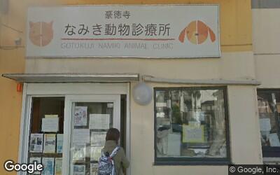 豪徳寺駅近くのなみき動物診療所