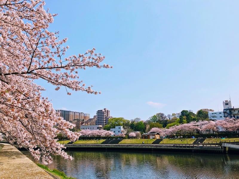 志村坂上の風景