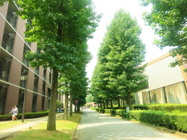 大学キャンパスイメージ